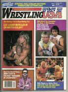 Wrestling USA - Winter 1987
