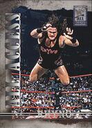 2002 WWF All Access (Fleer) Rhyno 20