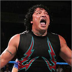 Lutadores de wrestling do México