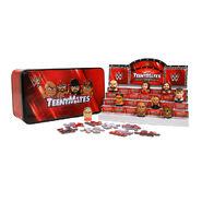 WWE TeenyMates Series 1 Collector's Tin
