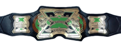 TNA X Division Championship Green.png