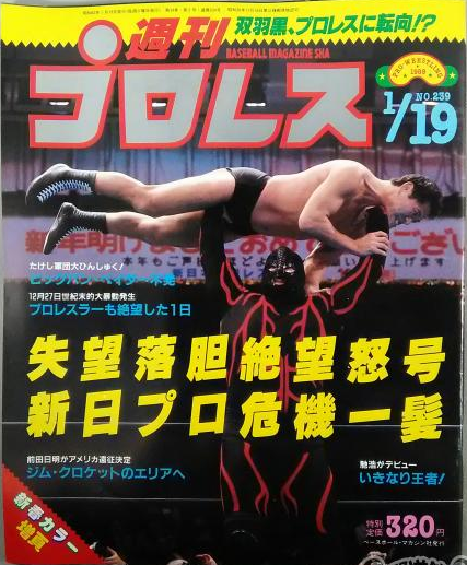Weekly Pro Wrestling No. 239