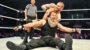 WrestleMania Revenge Tour 2014 - Orchies.6