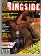 Wrestling Ringside - January 1985