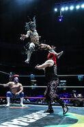 CMLL Domingos Arena Mexico (January 12, 2020) 23