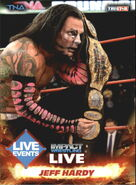 2013 TNA Impact Wrestling Live Trading Cards (Tristar) Jeff Hardy 51