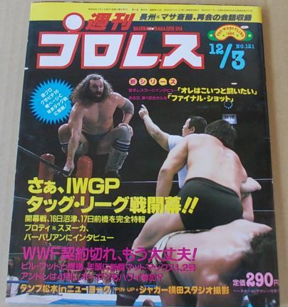 Weekly Pro Wrestling No. 121