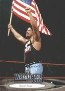 2003 WWE WrestleMania XIX (Fleer) Bradshaw 10