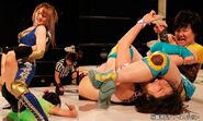 December 27, 2014 Ice Ribbon 3