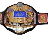 ECW Championship/Championship Gallery