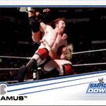 2013 WWE (Topps) Sheamus 75.jpg