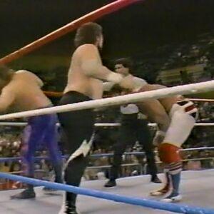 1.16.88 WWF Superstars.00016.jpg