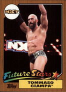 2017 WWE Heritage Wrestling Cards (Topps) Tommaso Ciampa 8