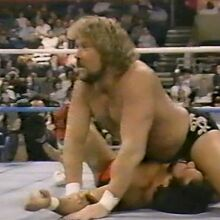 1.16.88 WWF Superstars.00020.jpg