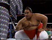 January 2, 1993 WWF Superstars of Wrestling.00012