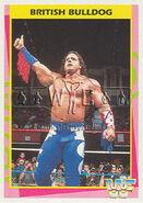 1995 WWF Wrestling Trading Cards (Merlin) British Bulldog 131