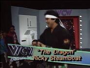 January 2, 1993 WCW Saturday Night 19