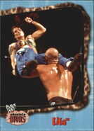 2002 WWE Absolute Divas (Fleer) Lita 45