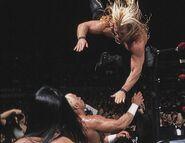 Royal Rumble 2000.5