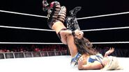 WWE World Tour 2015 - Dublin 13