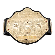 Ric Flair WCW Heavyweight Championship Replica Title (5mm)