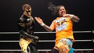 WWE World Tour 2014 - Minehead.15
