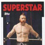 2016 WWE Heritage Wrestling Cards (Topps) Sheamus 33.jpg