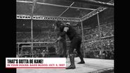 The Best of WWE The Best of In Your House.00045