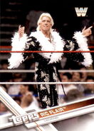 2017 WWE Wrestling Cards (Topps) Ric Flair 91