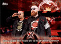 2018 WWE Road to Wrestlemania Trading Cards (Topps) Cesaro & Sheamus 39