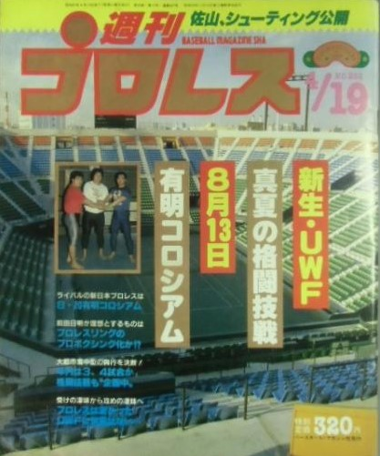 Weekly Pro Wrestling No. 252