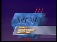 Wcw-sn-1991