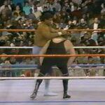 1.16.88 WWF Superstars.00018.jpg