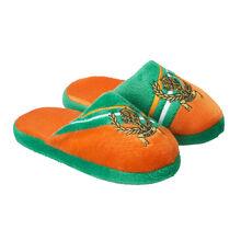 Sheamus Youth Slide Slipper.jpg