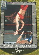 2002 WWF All Access (Fleer) Lita 89