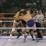 1.16.88 WWF Superstars.00003.jpg