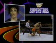 January 30, 1993 WWF Superstars of Wrestling.00014