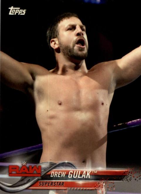 2018 WWE Wrestling Cards (Topps) Drew Gulak (No.29)