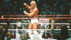 Hulk Hogan/Image gallery   Pro Wrestling   Fandom