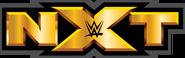 NXT Logo 2 2