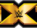 NXT TakeOver: Chicago II