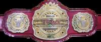 TNA Legends