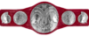 WWE Raw Tag Team Championship.png