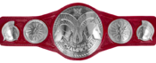 WWE Raw Tag Team Championship.png