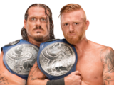 WWE SmackDown Tag Team Championship/Champion gallery