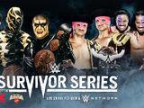 Survivor Series 2014/Image gallery