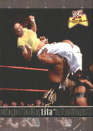 2001 WWF The Ultimate Diva Collection (Fleer) Lita 68