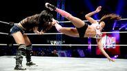 WWE World Tour 2013 - Minehead.9