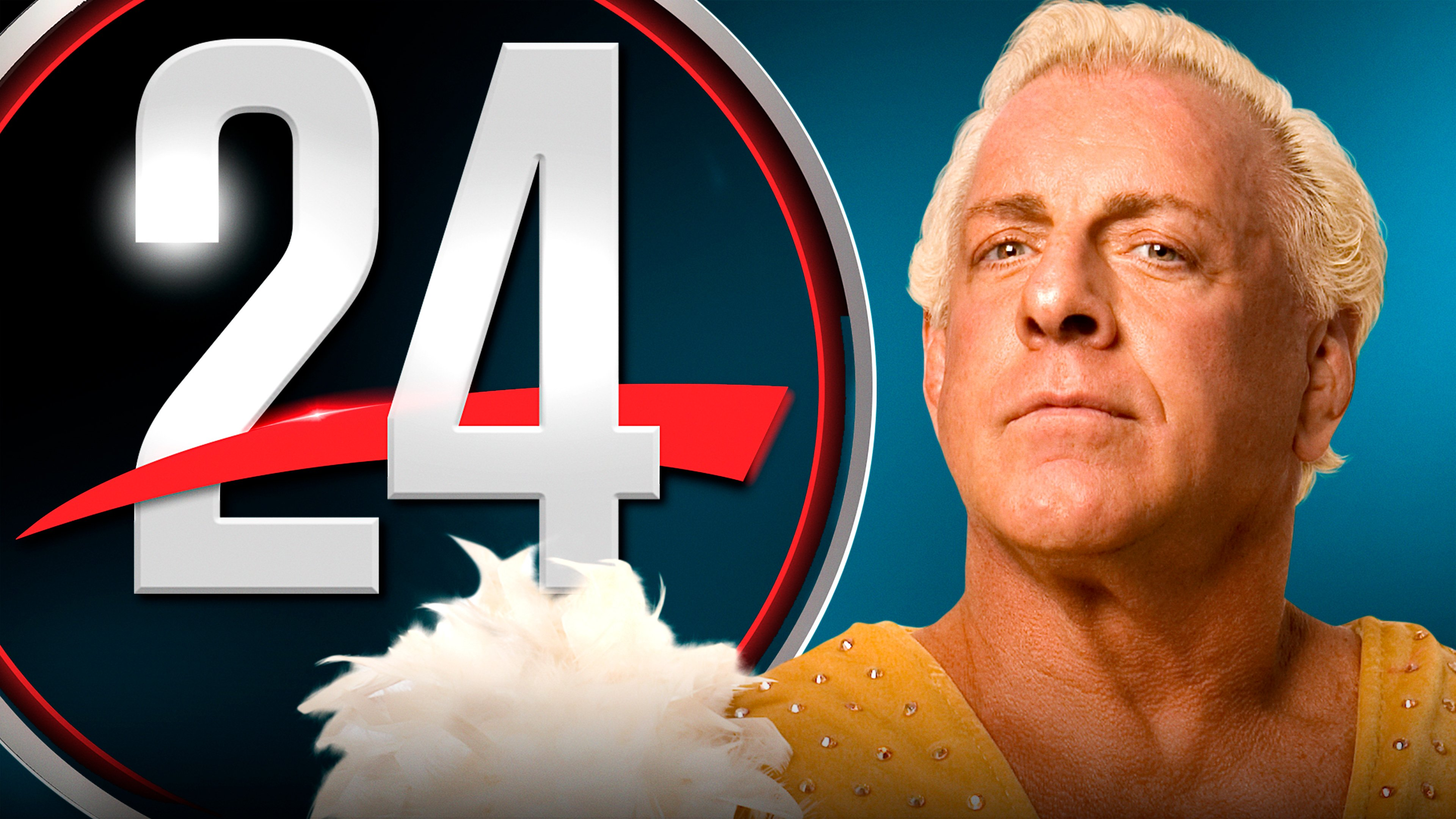 WWE 24: Ric Flair: The Final Farewell