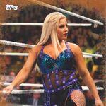 2017 WWE Road to WrestleMania Trading Cards (Topps) Dana Brooke 84.jpg
